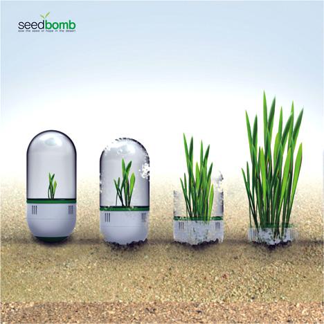 Bombas de semillas: una iniciativa diferente para reforestar el planeta