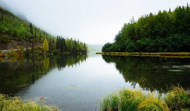 Solo un tercio de los ríos más largos de la Tierra fluyen libremente