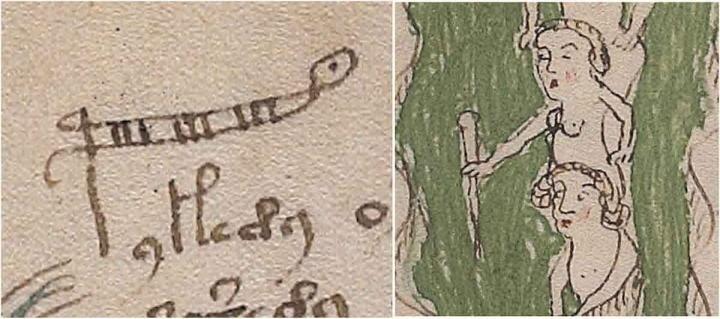 Esto muestra la palabra «palina», que es una vara para medir la profundidad del agua, a veces llamada vara o regla de los estadios. La letra 'p' ha sido extendida