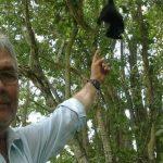 Asesinan a balazos al ambientalista José Luis Álvarez Flores, defensor del mono saraguato, en México