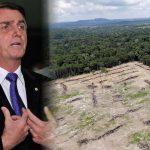 Bolsonaro anuncia explotación de la Amazonía en conjunto con Japón