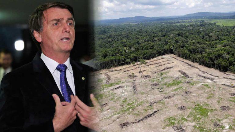 Resultado de imagen para bolsonaro y la amazonia