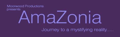 Amazonia, la obra de teatro que en 2004 presentó el director británico, Misha Williams, revelando información desclasificada, sobre la vida del malogrado explorador