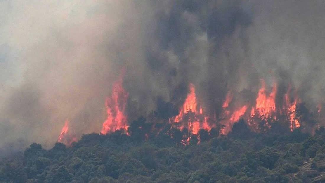El calor en España es tan intenso que un incendio forestal ocurrió espontáneamente