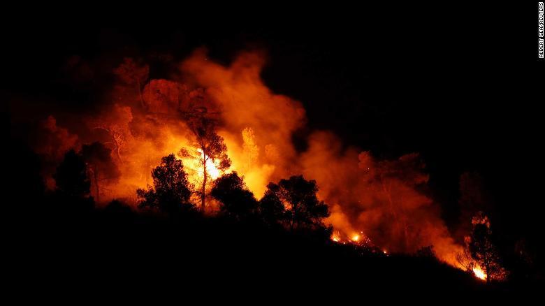 Los árboles se queman durante un incendio forestal cerca de Maials, al oeste de Tarragona, España, 27 de junio de 2019