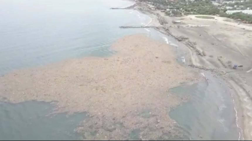Toneladas de basura afectan 18 kilómetros de playa en el municipio de Puerto Colombia