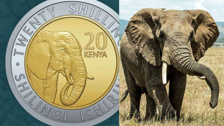 Kenia modifica sus monedas, quitan a presidentes y colocan a animales