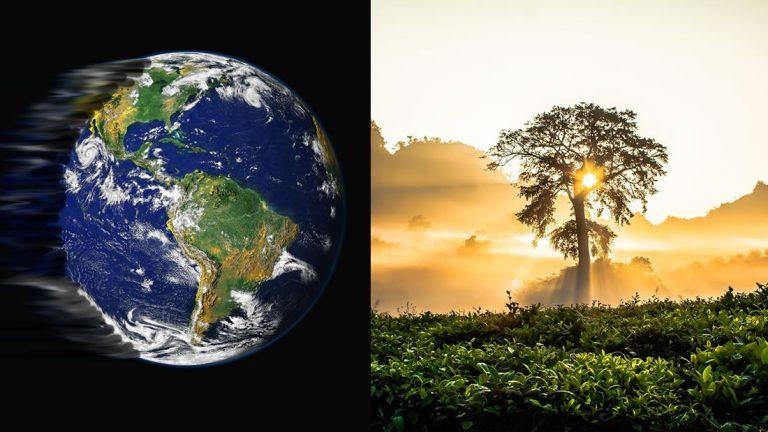 La atmósfera está tan contaminada que ni plantar árboles ayudará, informa una organización científica del clima