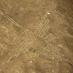 Misteriosas aves en las Líneas de Nazca no son lo que se creía
