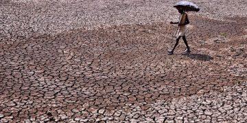 Ola de calor en la India sobrepasa los 50 grados centígrados