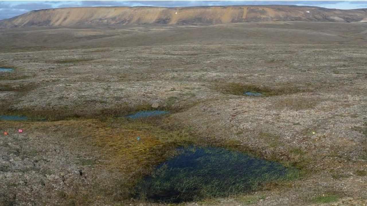 Vista general de un paisaje de permafrost ártico parcialmente descongelado cerca de Mold Bay, Canadá
