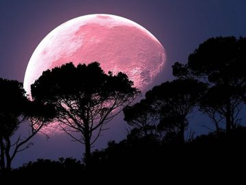 Una Luna Llena de Fresa iluminará los cielos este 17 de junio