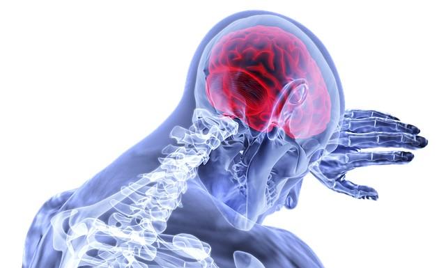 El cerebro humano no es capaz de reconocer amenazas existenciales futurísticas