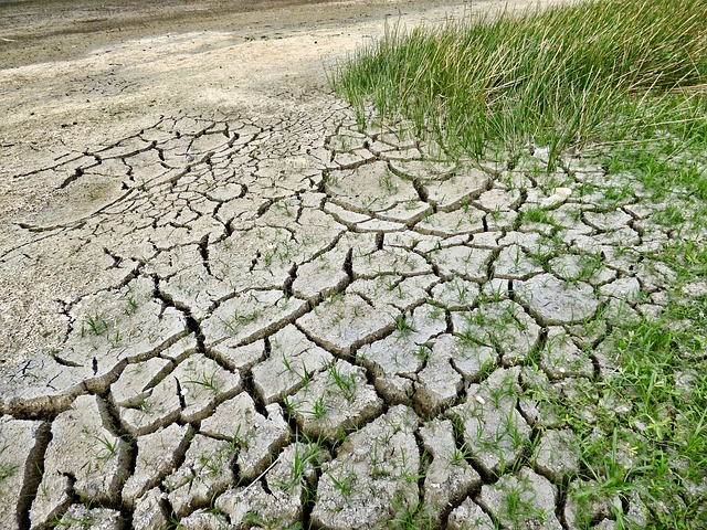 Hemos agotado todos los recursos de la Tierra para este año y apenas es julio