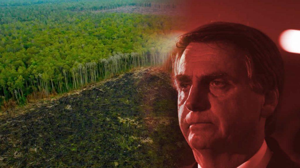 Bolsonaro no solo es un negador del cambio climático, también alienta a que las industria deforesten la Amazonía y ha tratado de entregar las tierras amazónicas para que sean explotadas