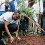 Etiopía planta 350 millones de árboles en un día para ayudar a enfrentar la crisis climática