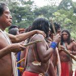Mineros de oro de la Amazonía asesinan a lider indígena e invaden sus tierras en Brasil