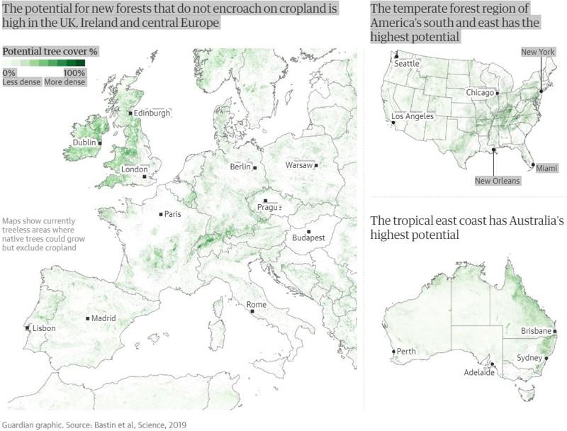 El potencial de nuevos bosques que no invaden las tierras de cultivo es alto en el Reino Unido, Irlanda, Europa central, Norte América y Australia