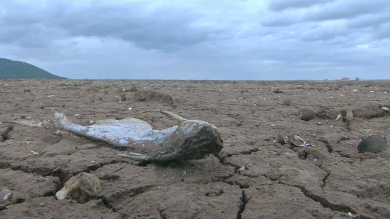 Graves sequías han golpeado a la localidad en Tailandia