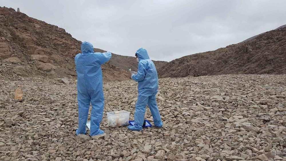 Al buscar microbios en Atacama, los investigadores tuvieron cuidado de no contaminar el sitio con nada que pudiera afectar los hallazgos