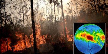 Consecuencias ocultas de los incendios de la Amazonía han sido reveladas por satélites