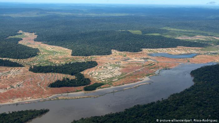 Noruega bloquea ayuda a Brasil por no detener la deforestación