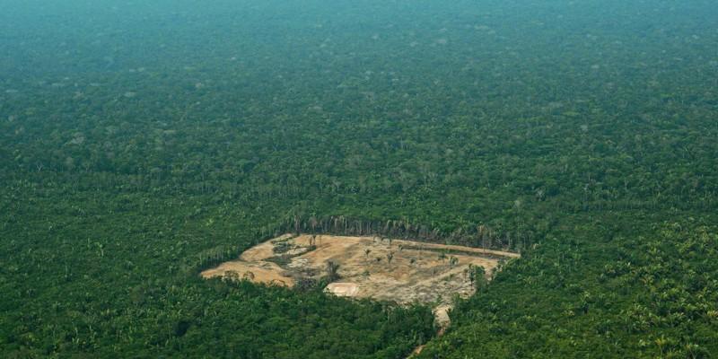Área desforestada en el Amazonas, en septiembre de 2017