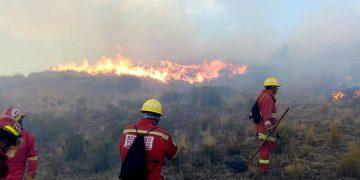 Gobernador de Madre de Dios (Perú) pide declarar estado de emergencia por incendios en la Amazonía