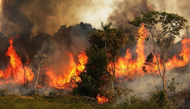 Los incendios solo causan un incremento en el dióxido de carbono en la atmósfera, causante del calentamiento global.
