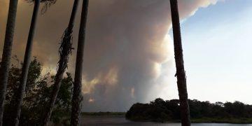 Incendios en Paraguay: 37.000 hectáreas de bosque devastadas por el fuego