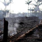 Lo peor de los incendios en la Amazonía de Brasil aún está por venir, dice experto