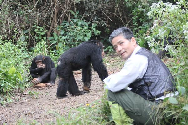 Tetsuro Matsuzawa en Guinea
