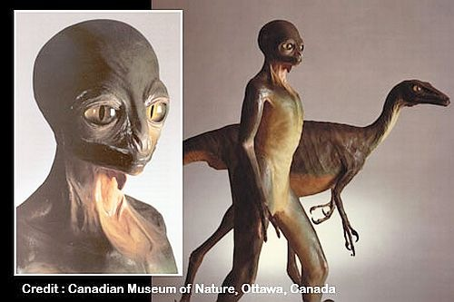 ¿Dinosaurios inteligentes evacuaron la Tierra hace millones de años? la hipótesis reptiloide
