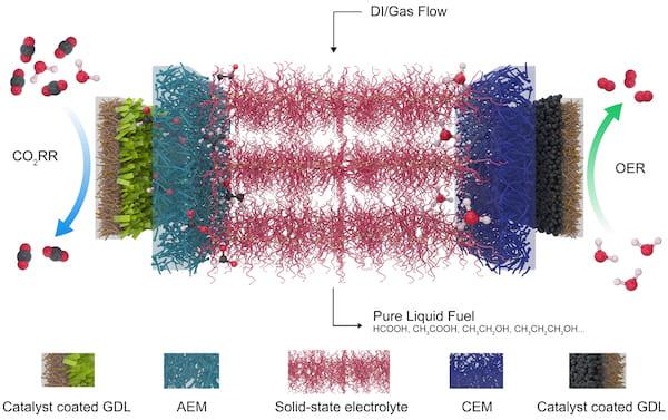 Este esquema muestra el electrolizador desarrollado en Rice para reducir el dióxido de carbono, un gas de efecto invernadero, a combustibles valiosos. A la izquierda hay un catalizador que selecciona dióxido de carbono y lo reduce a un formiato cargado negativamente, que se extrae a través de una capa de difusión de gas (GDL) y la membrana de intercambio aniónico (AEM) en el electrolito central. A la derecha, un catalizador de reacción de evolución de oxígeno (REA) genera protones positivos del agua y los envía a través de la membrana de intercambio catiónico (CEM). Los iones se recombinan en ácido fórmico u otros productos que se llevan a cabo fuera del sistema mediante agua y gas desionizados (DI)