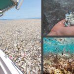 Después del Bronce y el Hierro, bienvenidos a la Era del Plástico, dicen los científicos