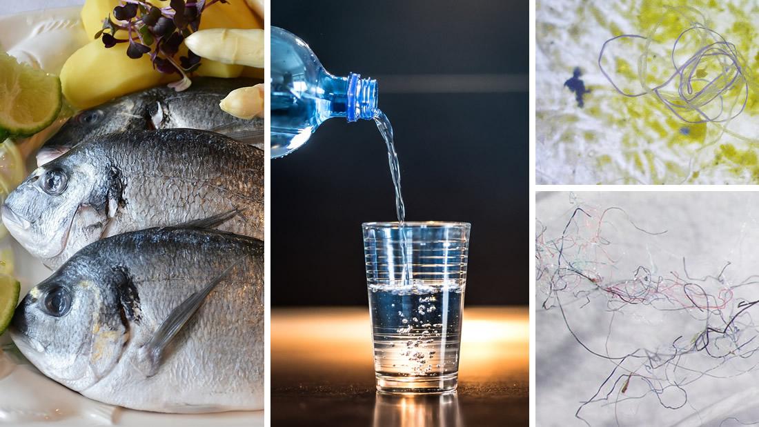 El plástico está infectándonos: consumimos más de 73.000 piezas de microplásticos por año, revela un estudio