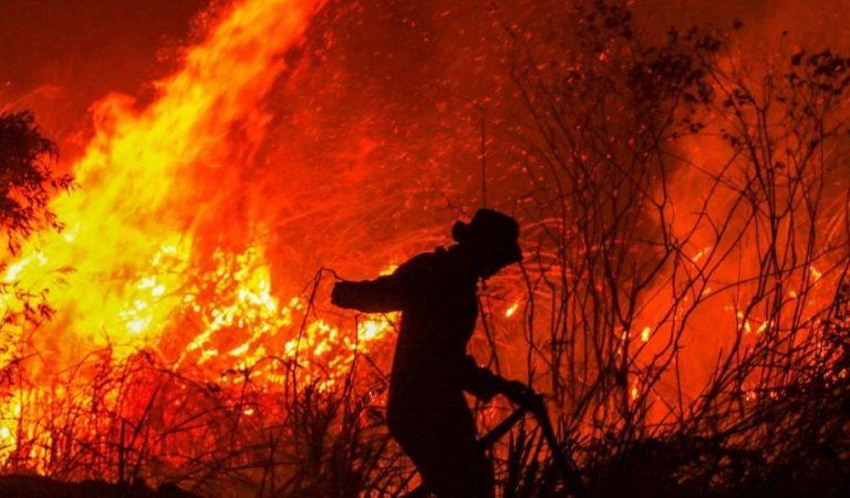 Incendios forestales en Indonesia a punto de causar una catástrofe medioambiental