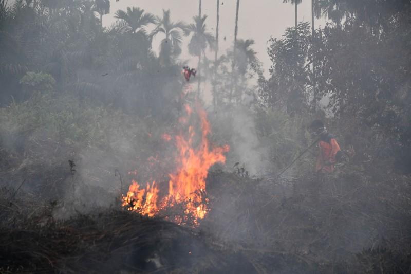 Bomberos indonesios extinguen un incendio en Pekanbaru
