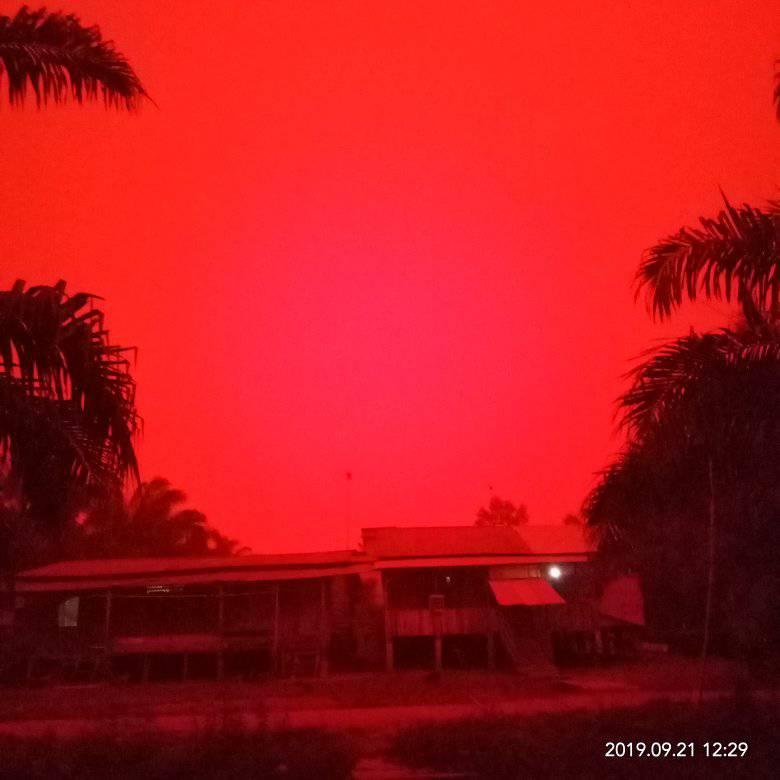Incendios forestales convierten los cielos de Indonesia en un «rojo infernal»