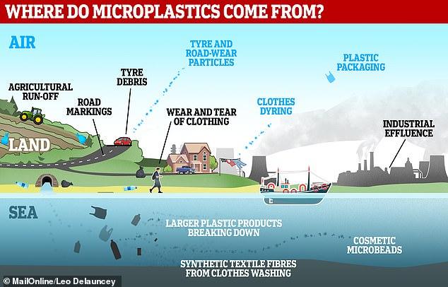 Los microplásticos ingresan a las vías fluviales a través de una variedad de medios y terminan suspendidos en el líquido. Se pueden transportar largas distancias tanto en agua como por aire, llevándolos a los rincones más remotos del mundo