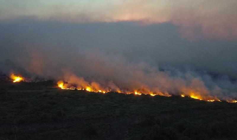Imágenes cerca del municipio de Corumba, en Mato Grosso do Sul, de avance de las llamas