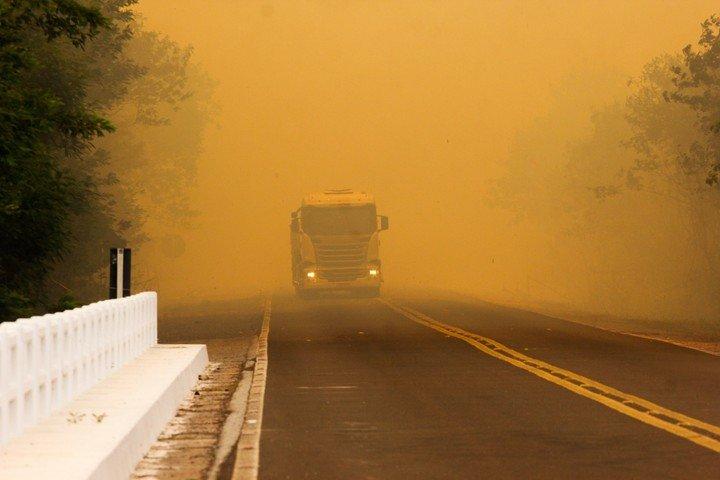 Incendios de «proporciones nunca antes vistas» destruyen el Pantanal en Brasil