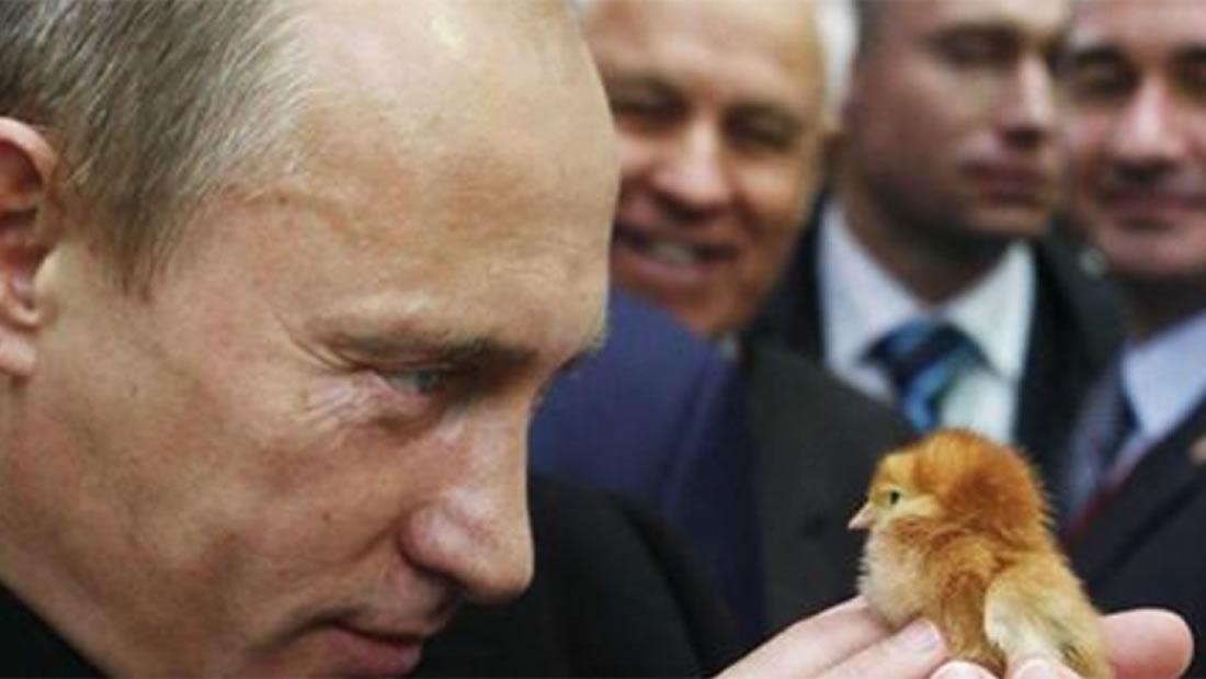 De acuerdo a Putin: occidentales estarían siendo controlados por alimentos genéticamente modificados