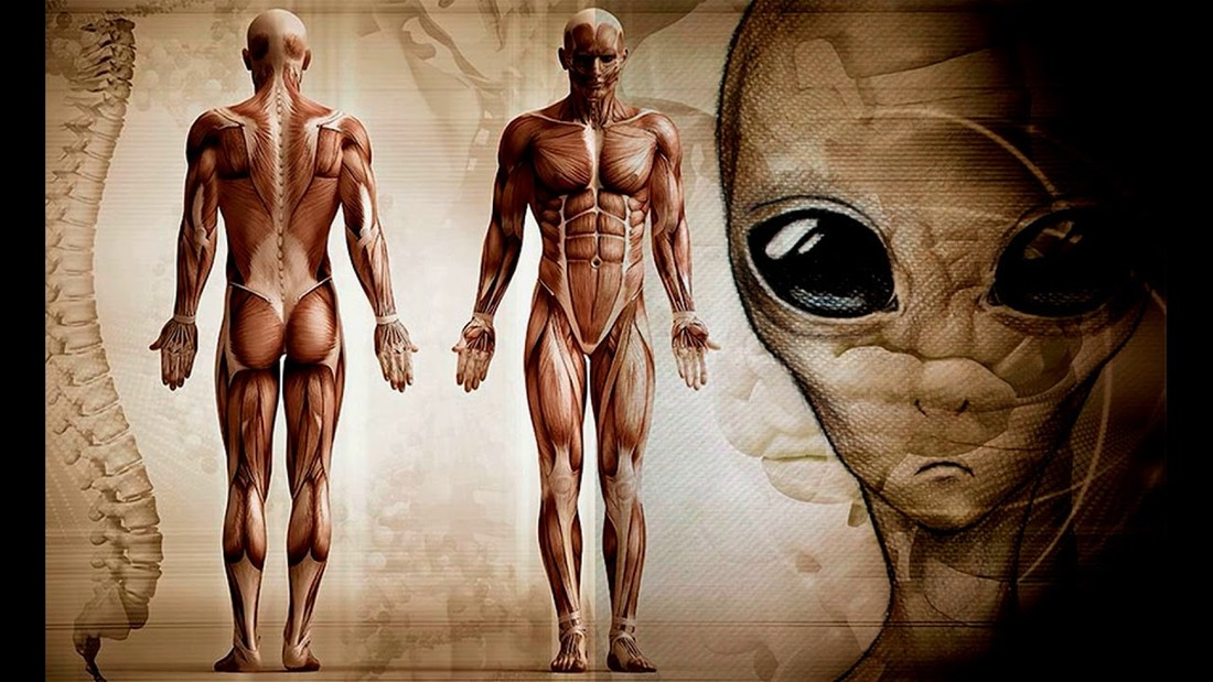Científico afirma que humanos somos «extraterrestres» y fuimos transportados a la Tierra