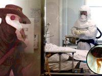 Dos personas son diagnosticadas con «Peste Negra» en China