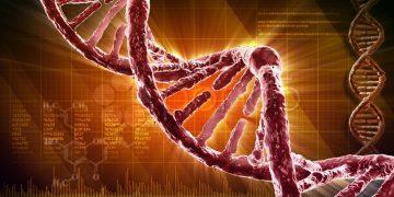 El ADN es solo uno entre millones de posibles moléculas genéticas