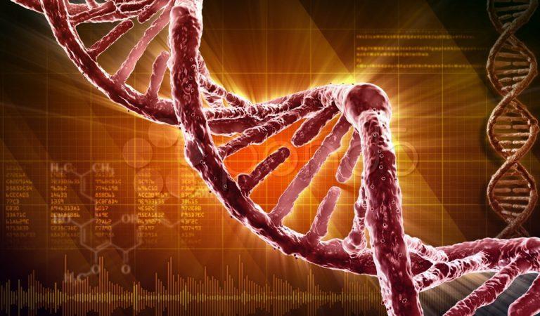 El ADN no sería único: pueden existir millones de posibles moléculas genéticas