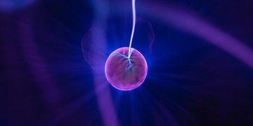 Físicos han encontrado evidencia de una nueva fuerza de la naturaleza