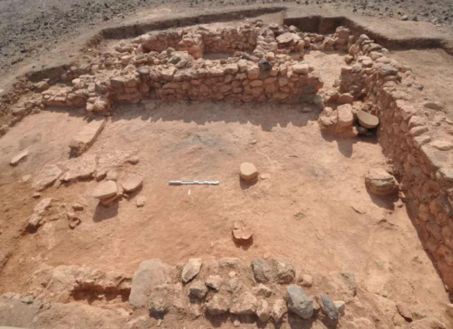 Los arqueólogos que excavan un asentamiento minoico en un lugar al oeste de la isla Chryssi, cerca de Creta, han encontrado los restos desechados de conchas de trunculo Hexaplex, utilizados en la producción del color púrpura. En la imagen: sitio de la excavación