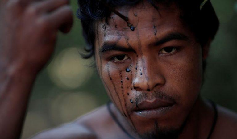 Guardián indígena de la Amazonía en Brasil es asesinado por madereros ilegales